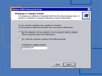 Install Windows 2000 Professional: Workgroup or Computer Domain