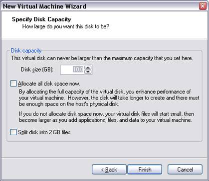 Virtual Machine Disk Capacity